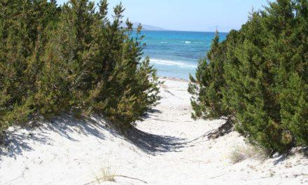 Natur pur an Sardiniens Stränden – meine Geheimtipps