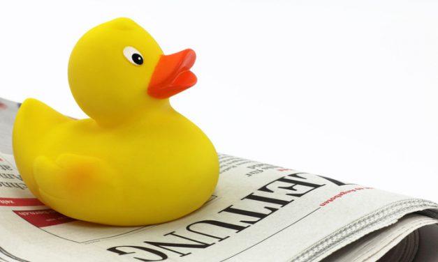 Was wir von Italiens Enten lernen können