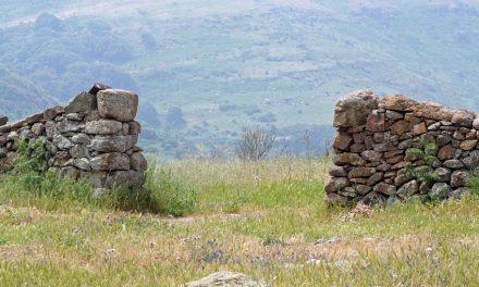 Die Mauern und ihre Folgen